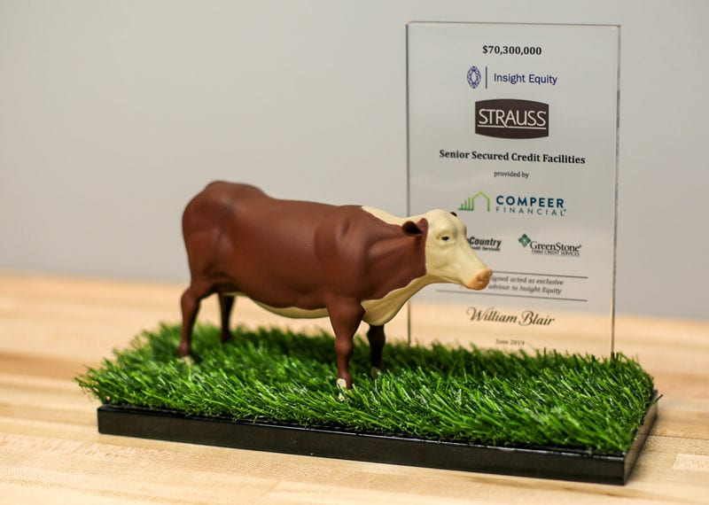 3D printed cow hand painted mounted on artificial grass base with personalization glass panel.
